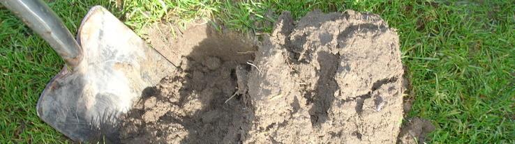 Met bodemkundig onderzoek van Van Iperen weet u hoe gezond de bodem is.