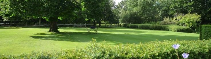 Graszaad: zaden voor een prachtige grasmat | Van Iperen